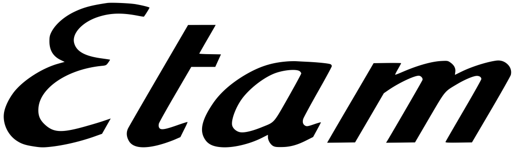 Logo Groupe ETAM